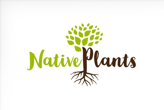 Native Plants Logo Design